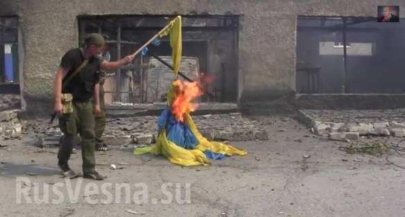 Ополченцы сжигают украинский флаг в Ясиноватая