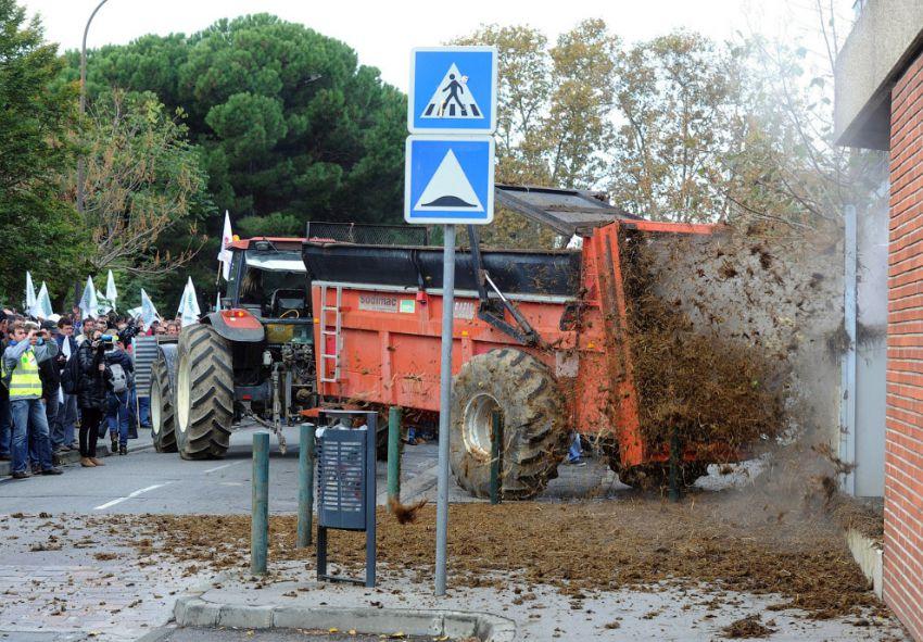 завалили навозом здание департамента сельского хозяйства, а также местной мэрии. Тулуза