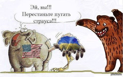 Перестаньте пугать страуса