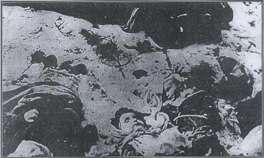 ЛИПНИКИ (LIPNIKI), уезд Костопол, воеводство луцкое. 26 марта 1943. Житель колонии Липники — Якуб Варумзер без головы, результат резни, совершённой под покровом ночи террористами ОУН-УПА (OUN-UPA). В результате этой резни в Липниках погибли 179 польских жителей, а также поляков из окрестностей, ищущих там укрытие. Это были преимущественно женщины, старики и дети (51 — в возрасте от 1 до 14 лет), 4 укрываемых еврея и 1 русская. Было ранено 22 человека. Идентифицированы по имени и фамилии 121 польская жертва — жители Липник, которые были известны автору. Также лишились жизни трое агрессоров. Фотограф Сарновски — вышеуказанная фотография, а также дальнейшие, касающиеся Липник. Вышеуказанная фотография, а также следующие, относящиеся к Липникам, опубликованы благодаря Александру Куряту.