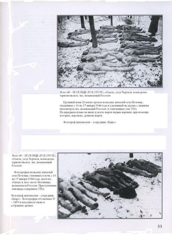 ПОЛОВЦЕ (PO?OWCE), область, уезд Чортков, воеводство тарнопольское, лес, называемый Росохач. Крупный план 26 нагих трупов польских жителей села Половце, уведённых с 16 на 17 января 1944 года в удалённый на десять с лишним километров лес, называемый Росохач, и замученных там УПА. На переднем плане на шеях и ногах жертв видны верёвки, при помощи которых, вероятно, душили жертв. Фотограф неизвестен — сотрудник 'Kripo'.